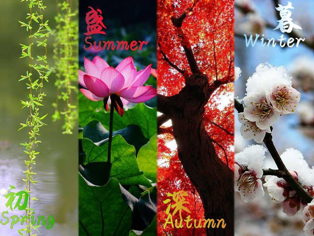 地球是太阳系的九大行星之一,围绕着太阳公转,每一周期都出现春、