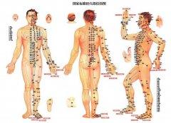 经络在诊断治疗方面的作用