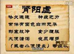 20110315养生堂视频:肖相如谈肾虚