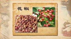 胡椒和花椒图片