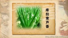 20120220养生堂视频:颜正华讲通腑