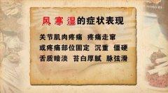 20120409养生堂视频:朱跃兰讲风湿病