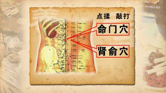肾俞穴位位置图