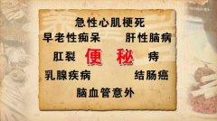 20120710养生堂视频:李乾构讲玉米、平补,餐桌上的良药(2)