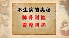 <b>20120723养生堂视频:王庆国讲伤寒论、脾胃之气,不生病的奥秘(1)</b>