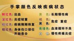 20120820养生堂视频:刘剑锋讲手诊,心区,掌握生命密码1