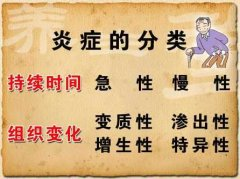 20120902养生堂视频:刘新民讲炎症,消炎,抗生素,别把炎症不当事