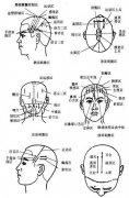 头针刺激区