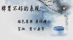20130209健康之路视频和笔记:李军祥讲养胃怎么吃1,养胃,脾胃