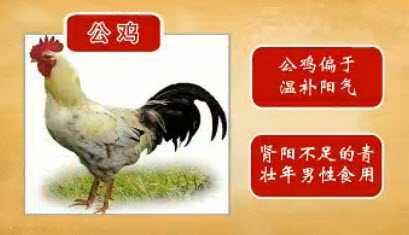 20130221天天养生视频和笔记:胡爱萍讲鸡汤,补阳补肾补脾胃下奶