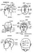 胃炎的头面部按摩穴位图图片