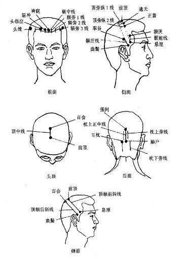 肋间神经痛的头部按摩穴位图图片