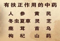 20130313养生堂视频和笔记:李忠讲抗癌,防癌,正气,补益,人参