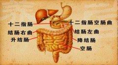 <b>20130328养生堂视频和笔记:赵荣莱,翟兴红讲腹胀,肝郁气滞,排气饮</b>