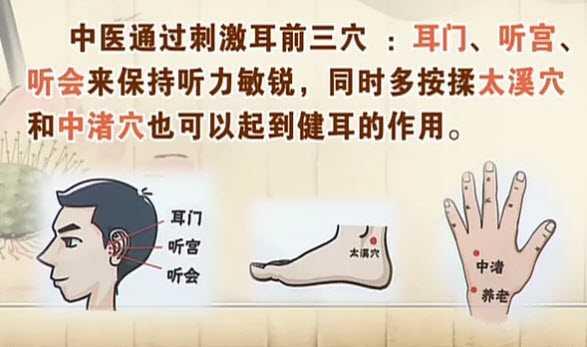20130329饮食养生汇视频和笔记:刘家瑛讲耳鸣,耳聋,中耳炎,抗生素
