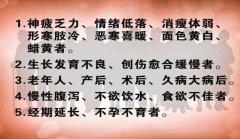 20130404养生堂视频和笔记:傅延龄讲春季养生,寒温原则,肉桂,清明