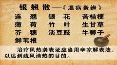 20130410养生堂视频和笔记:刘景源,刘宁讲,风热袭表证,辛凉解表