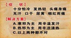 20130411养生堂视频和笔记:刘景源,刘宁讲寒包火,表寒里热证,黄芩