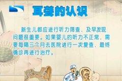 20130702饮食养生汇视频和笔记:李永新讲耳聋,人工耳蜗,助听器