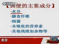 20130731万家灯火视频和笔记:王兴国讲肠道菌群,粪便,有益菌