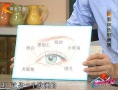眼睛各部分的名称和结构图片