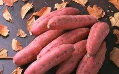 <b>20130924爱尚健康视频和笔记:刘纳讲食物,胡萝卜,红薯,芡实,连藕</b>