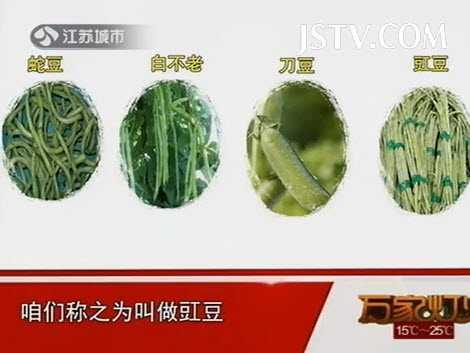 扁豆的品种