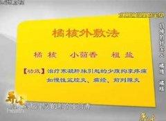 20131129贵州卫视养生视频和笔记:刘钊讲防胃结石,固肾养精之法