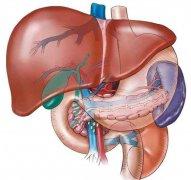 原发性肝癌图片