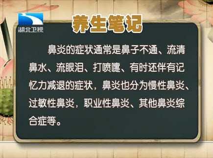 20140109鼻炎v鼻炎汇视频和视频:王向东讲笔记麦琼方饮食图片