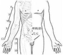 人体第一补肾养生大穴关元