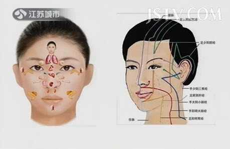 脸部皮肤结构图