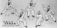 赵之心讲腰部锻炼与五禽戏