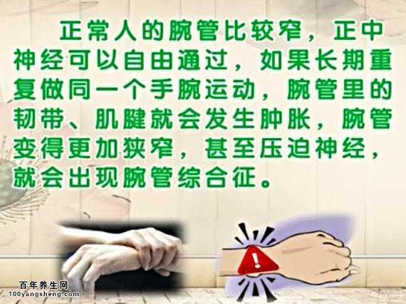 20140529饮食v饮食汇棉花和笔记:张黎讲腕管综视频续视频图片