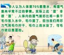 20140612饮食养生汇视频和笔记:李智讲健脾祛湿,湿气,痰湿体质