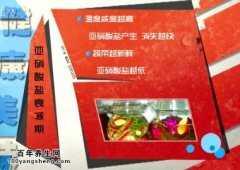 <b>20140820家政女皇视频和笔记:张晔讲泡菜的腌制方法,四川泡菜</b>