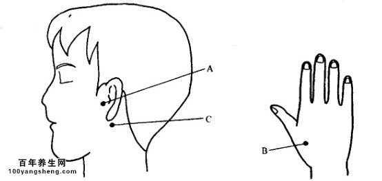 手绘耳朵结构图