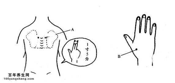 背部骨头结构图