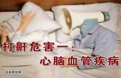 20150222养生堂视频和笔记:韩德民,打鼾,呼吸暂停,高血压,睡姿