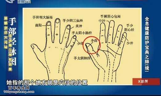 肺部刮痧疗法,手部经络