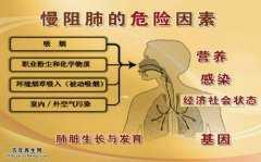 20150905养生堂视频和笔记:王辰,杨汀,慢阻肺,厨房油烟,三凹征