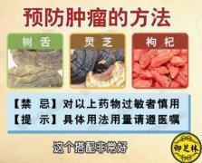 20160606饮食养生汇视频和笔记:张文彭,肺癌,胃癌,卵巢癌,蘑菇虾