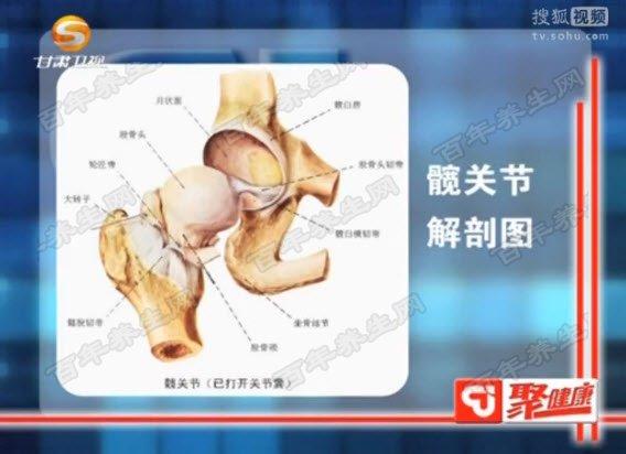 �y�P�解剖�D