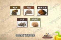 20160709饮食养生汇视频和笔记:张文彭,肝癌,胃癌,双菇烧竹笋