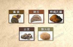 20160714饮食养生汇视频和笔记:张文彭,肝癌,胃癌,双菇烧竹笋