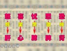 20160814X诊所视频和笔记:李征宇,补肾,长寿,清热利咽鸭子汤