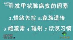 20160817中华医药视频和笔记:左新河,陈继东,甲状腺结节,甲状腺