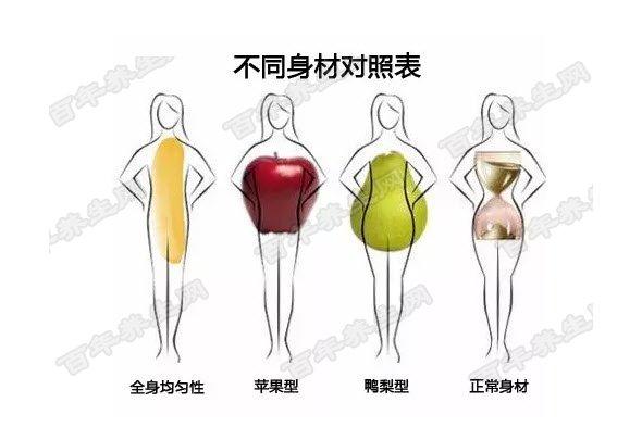 肥胖的类型