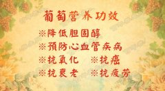 20160902养生堂视频和笔记:冯双庆,张晋,葡萄,花青素,白藜芦醇