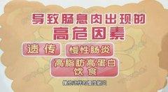 20161208养生堂视频和笔记:刘骞,结肠癌,直肠癌,癌前病变,息肉
